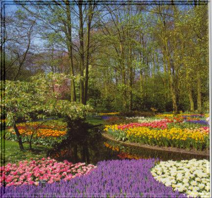 Was der Sonnenschein für die Blumen ist, das sind lachende Gesichter für die Menschen.